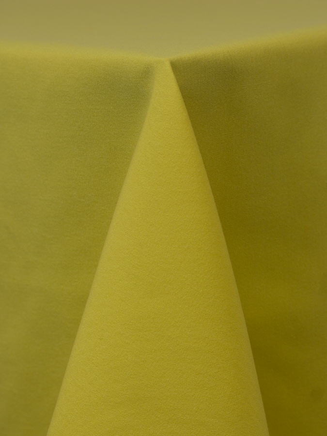Lemon-304-1